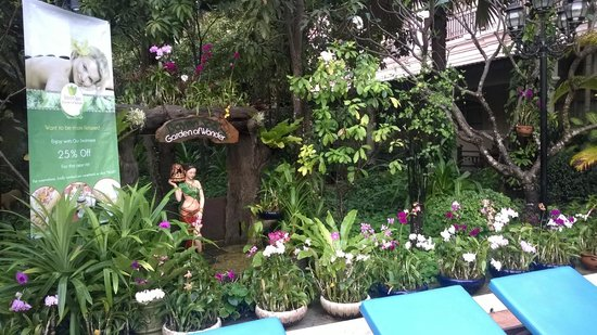 Hotel Somadevi Angkor Resort & Spa: orchids in pool area