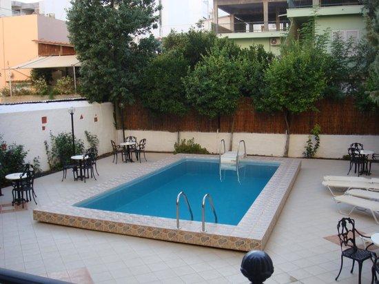 Hotel Bakos: бассейн