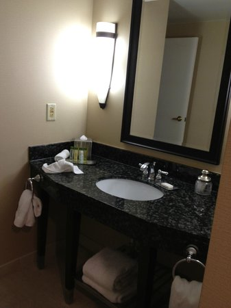 DoubleTree Hotel Washington DC: DoubleTree, Washington DC, bathroom