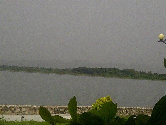 Cool Beans Cafe : esta es la vista al lago donde están los arboles del restaurante