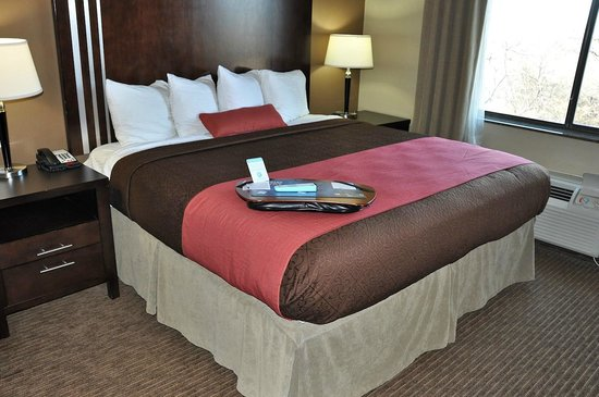 Best Western Plus Texoma Hotel & Suites: King bed in our suite. Notice that it's taller than beds at most hotels.