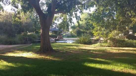 Quality Resort Inlander Mildura: The Gardens are very relaxing and Pleasant - Palms near the pool too!