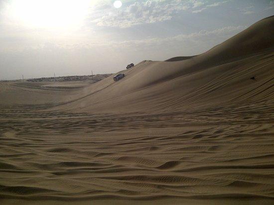 Emirates Tours and Safaris: The dune bashing