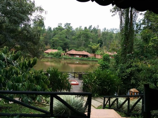 Evolve Back, Coorg: View from one of the Resturants