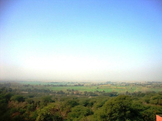 Bharatgarh Fort : The view of the from the roof-top