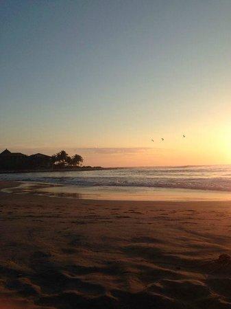 Troncones Point Hostel: Playa