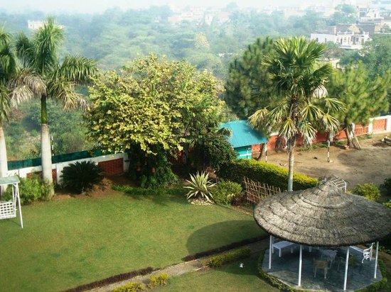 Bharatgarh Fort : The lawns...