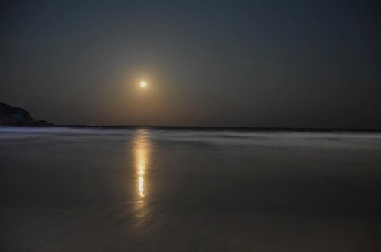 Palita Lodge : Луна