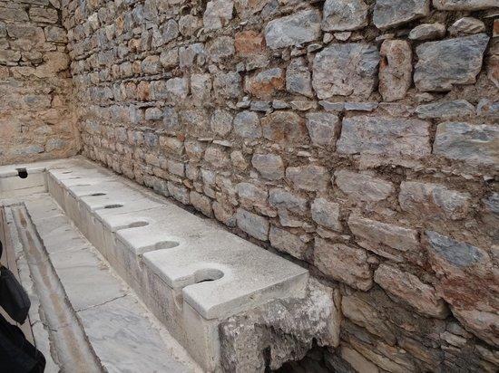 Public Latrine : トイレです(笑)