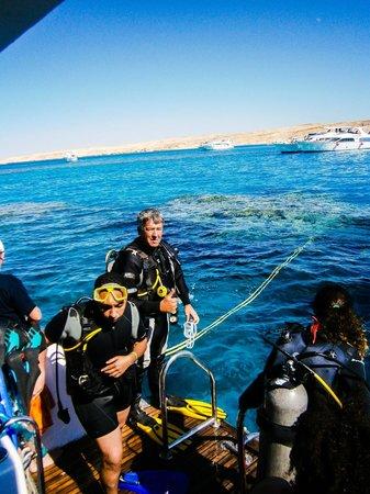 Marina Divers Sharm el Sheikh