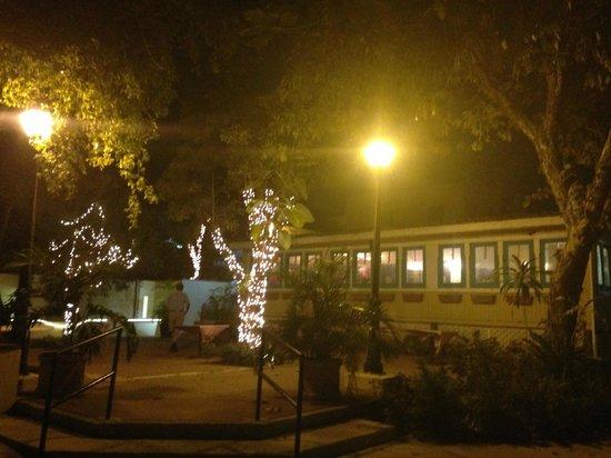 Cafe de la Plaza: Twinkling lights at Night