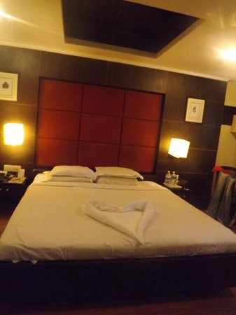 Quality Inn and Suites River Country Resort: Awesome