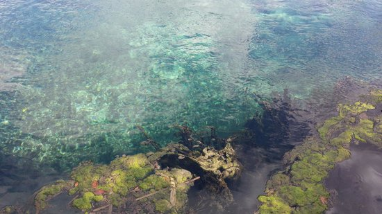 Yalahau Lagoon : yalahau ..... the boss
