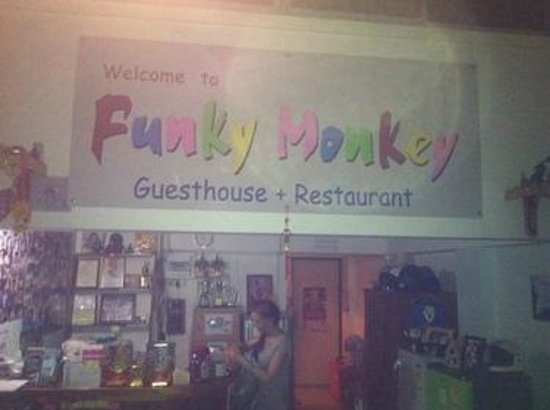 Funky Monkey Guesthouse & Tours: Empfang