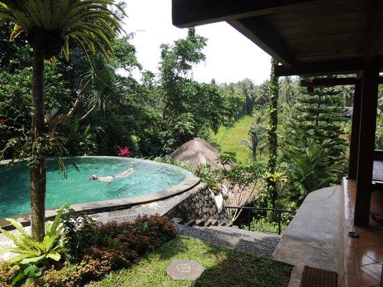 Graha Moding Villas: Pool