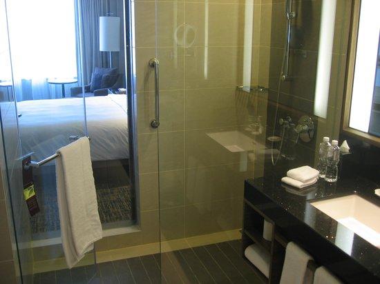 Renaissance Johor Bahru Hotel: Shower