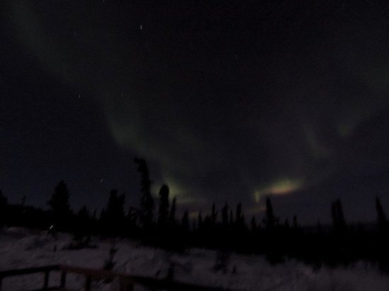 Aurora Borealis Lodge : This was just in front our room