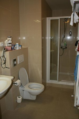 BEST WESTERN Hotel Pav : Ванная