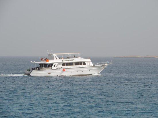 Red Sea - Dive Cruise: Наша яхта была чуть побольше и над верхней палубой была решетка