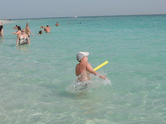 Red Sea - Dive Cruise: Вид с острова