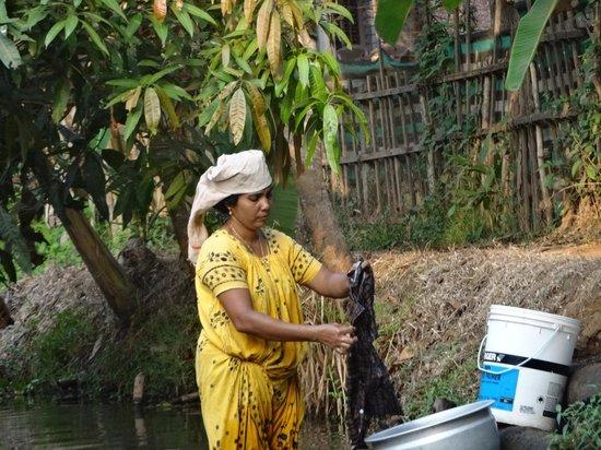 Nelpura Heritage Homestay: l ' heure de la lessive dans les canaux