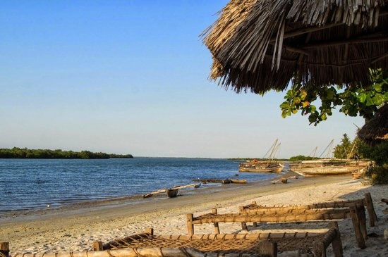 Bomani Beach Bungalows : View from the beach