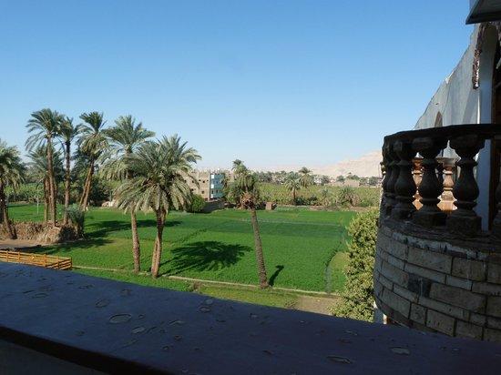 Cleopatra Hotel Luxor: Uitzicht vanuit de kamer
