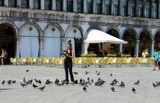 Markusplatz (Piazza San Marco): St. Marks.