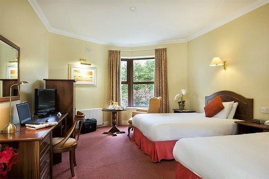 Oranmore Lodge Hotel: Standard Twin Double room