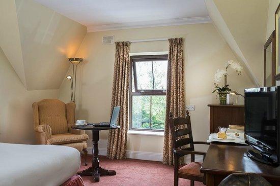 Oranmore Lodge Hotel: Standard Room