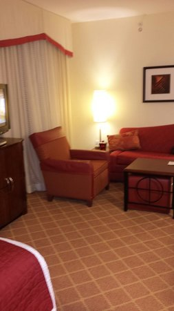 Residence Inn South Bend Mishawaka: Living room