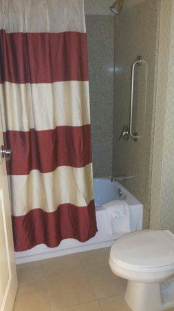 Residence Inn South Bend Mishawaka: Bathroom
