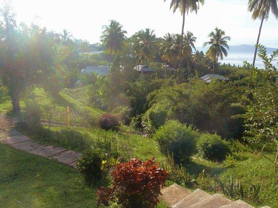Thalassa PADI Dive Resort : Thalassa Bungalows