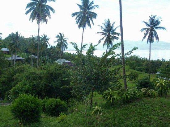 Thalassa PADI Dive Resort : Room with a view