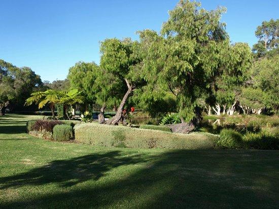 Grand Mercure Basildene Manor : View from grounds