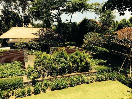 COMO Uma Ubud: View from Uma Cucina over hotel