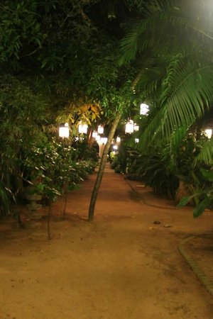 Fort House : Lantern lit pathway to the jetty