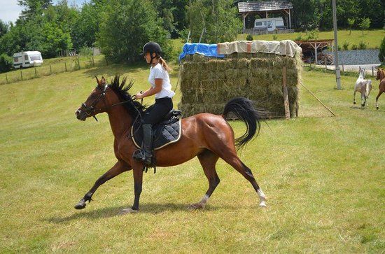 Equestrian Club Djeca Vjetra