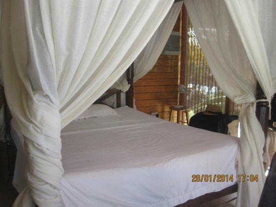 Coral Reef Beach Villa and Apartments : Double room