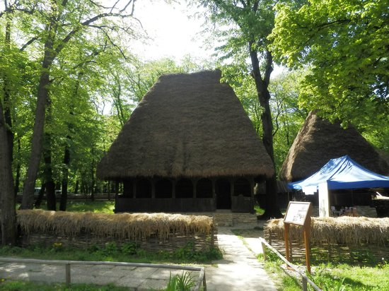 Village Museum (Muzeul Satului): Old house