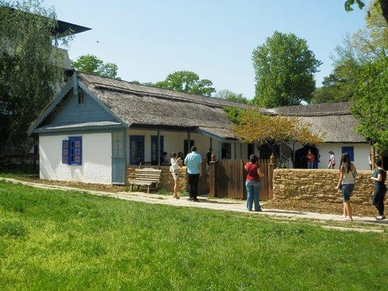 Village Museum (Muzeul Satului): hand-woven carpet