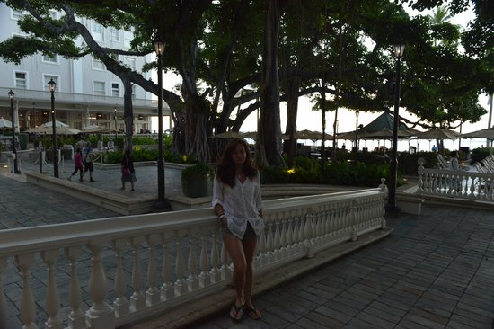 Moana Surfrider, A Westin Resort & Spa: Ресторан