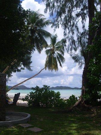 Hotel Cote D'Or : panorama della spiaggia