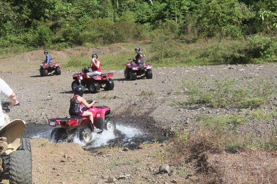 Ocean Ranch Park: ATV