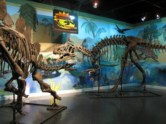 Heard Natural Science Museum & Wildlife Sanctuary: Indoors or out, always a hit!