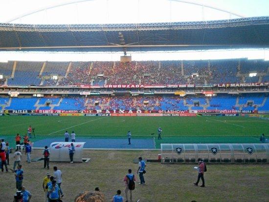 Estadio Olimpico Nilton Santos : meio do campo !!!