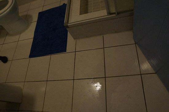 Chalets d'Anse Forbans: water leak