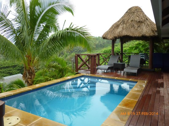 Wananavu Beach Resort: Honeymoon bure with plunge pool