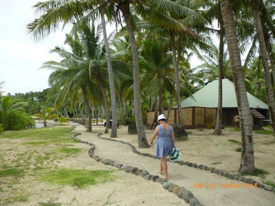Wananavu Beach Resort: Beachfront