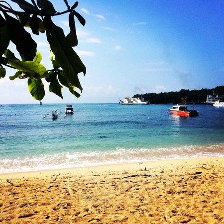 Danima Resort & Restaurant: Stranden Gili Trawangan